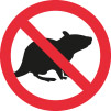 DINITROL Protect your engine compartment from unwanted rodent visitors hydro-carbon based don't like the taste mice, rats and squirrels rural england vehicles